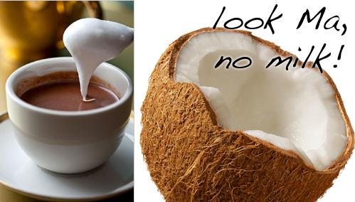 hot_chocolate_coconut